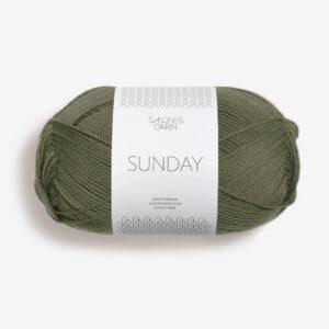 Sunday Vintermose 9561